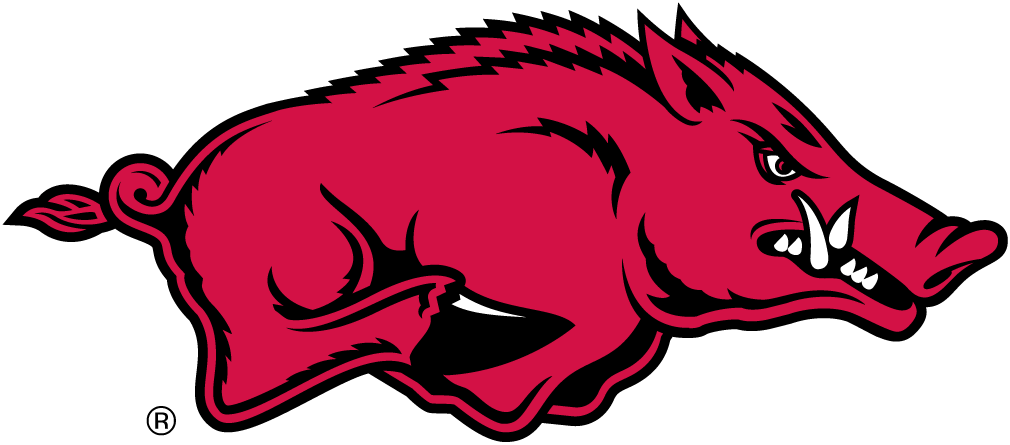 Arkansas Razorbacks iron ons