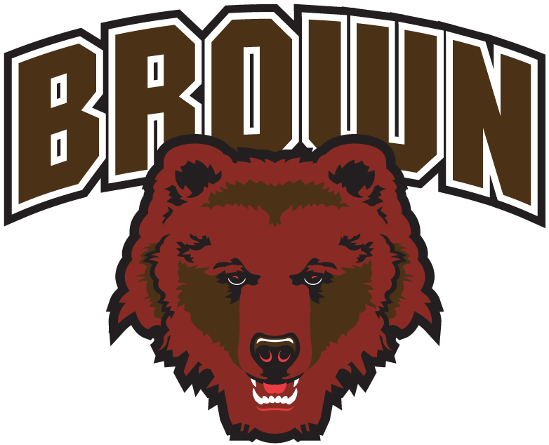 Brown Bears iron ons