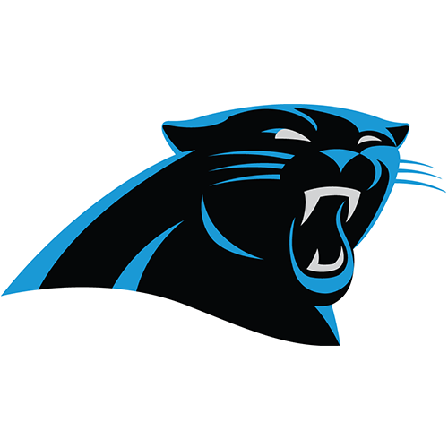 Carolina Panthers iron ons