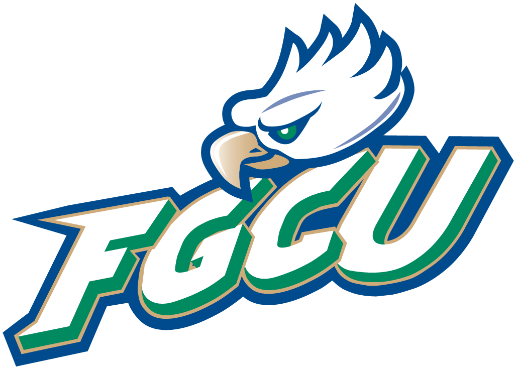 Florida Gulf Coast Eagles iron ons