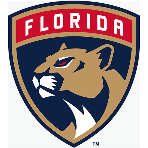 Florida Panthers iron ons