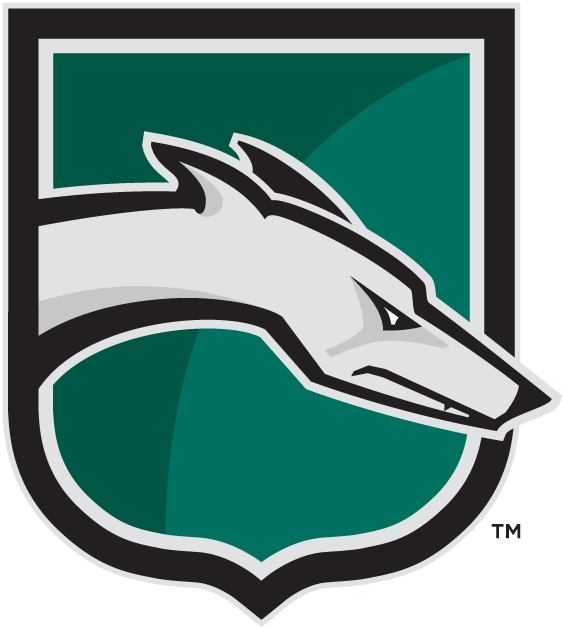 Loyola-Maryland Greyhounds iron ons