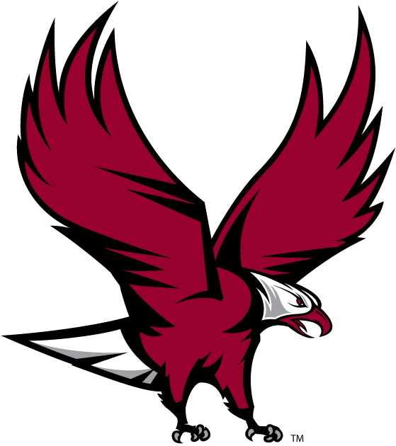 NCCU Eagles iron ons