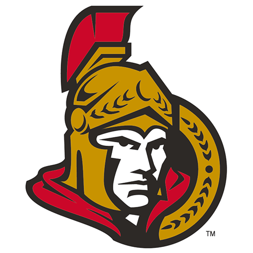 Ottawa Senators iron ons