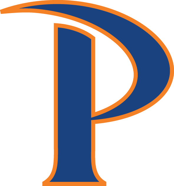 Pepperdine Waves iron ons