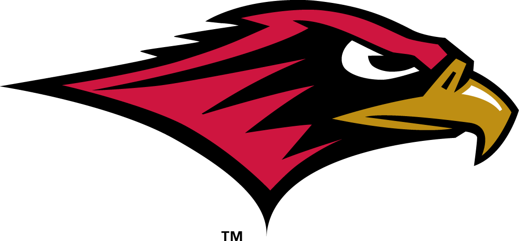 Seattle Redhawks iron ons