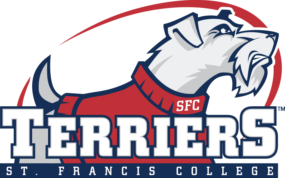 St. Francis Terriers iron ons