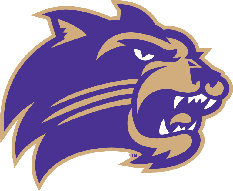 Western Carolina Catamounts iron ons