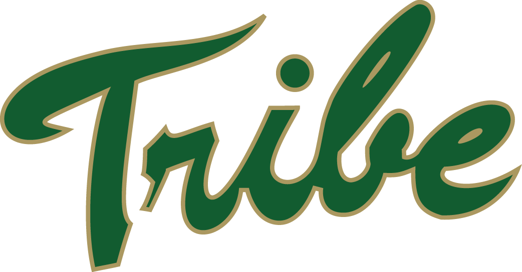 William and Mary Tribe iron ons