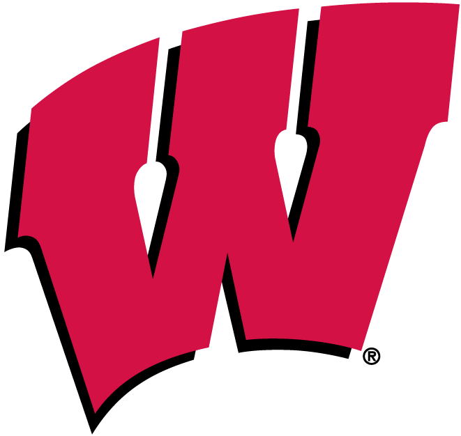 Wisconsin Badgers iron ons