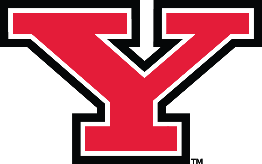 Youngstown State Penguins iron ons